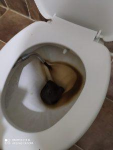 nevşehir petek temizliği